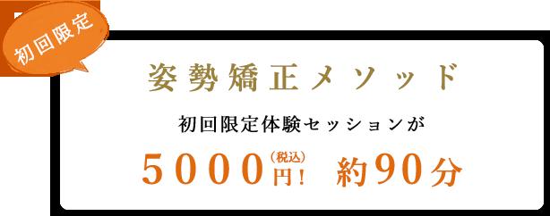 姿勢矯正メソッド 初回限定体験セッションが5000円! 約90分